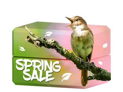Spring Sale !